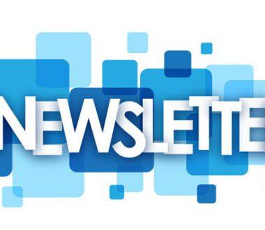 Newsletter N°2